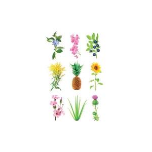 Click & Grow Experimental Plant Pods